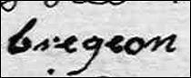 bregeon